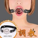 圖片-日本原裝進口A-ONE.調教 開口口枷